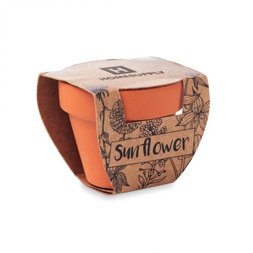 Керамична саксия със слънчоглед